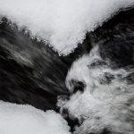 Mit Eis überzogene Steine in einem Fluss