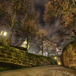 Bild eines Zugangs zu einem Tor mit überhängenden Bäumen bei Nacht