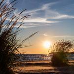 Blick vorbei an Dünengras auf eine tief stehende Sonne