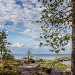 Blick über eine See mit einem Baum am rechten Rand