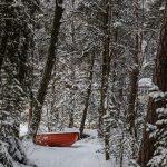 Blick auf ein Boot in einem verschneiten Wald