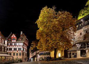 Bild des Baumes am Tiergärnertorplatz bei Nacht
