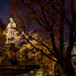 Statue hinter einem Baum bei Nacht
