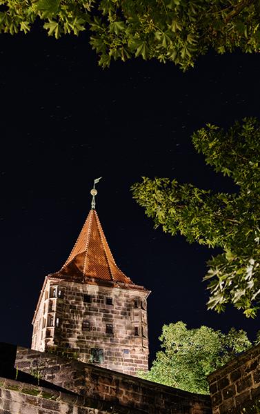 Blick auf einen Turm umrahmt von Ästen bei Nacht