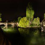 Panorama einer Brücke, eines Baumes und eines Steges