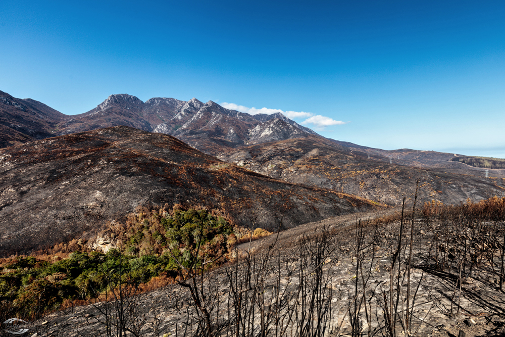 Blick über verbrannte Berge